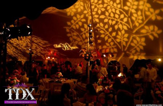 4-TDX-Branches-Gobo-Light-in-Tent